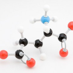 Un poco de química para entender nuestra salud, los Aminoácidos