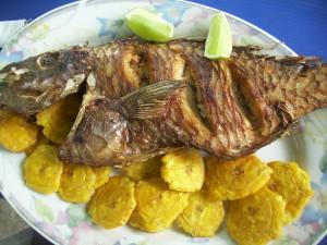 El pescado de origen animal también tiene alanina