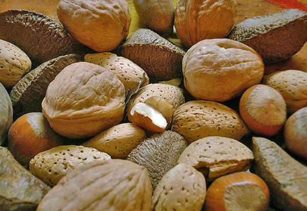 Frutos secos, una fuente de salud