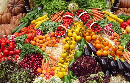 pros y contras dieta vegetariana