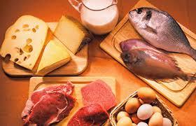 alimentos-rico-en-proteinas